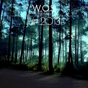 Wall Of Sound #8 | Juin 2013 Playlist